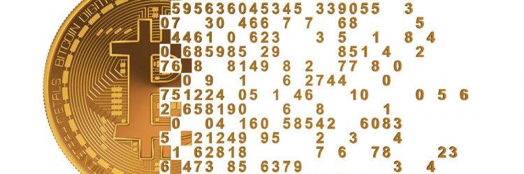 14459644_1b43a46801f09c6a536973e840e3453