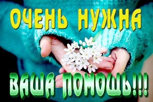 164949_604x403_134803dc7a44ae.jpg