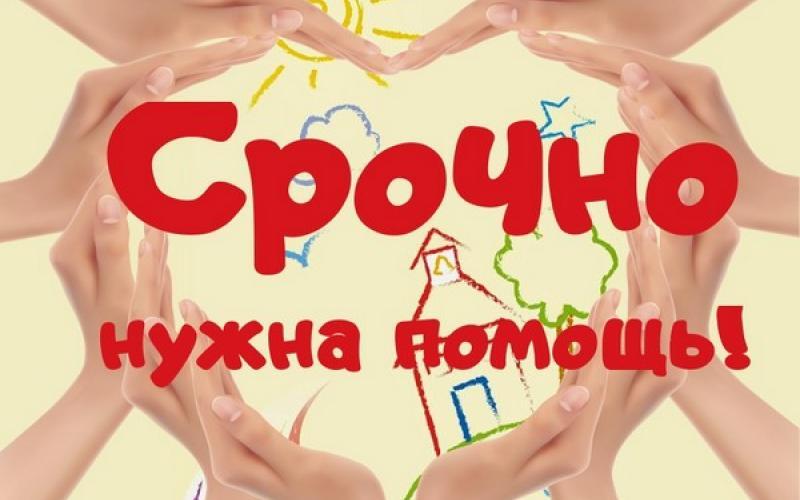 164949_800x500_srochno_nuzhna_pomoshch_1