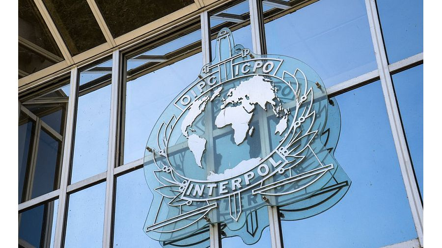 210117_interpol-konferenciya-v-katare_1.