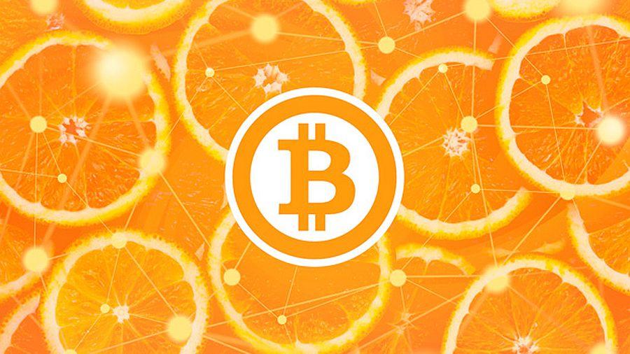 210217_citrus-prinimaet-bitcoini_1.jpg