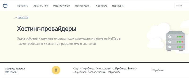 net__800.jpg