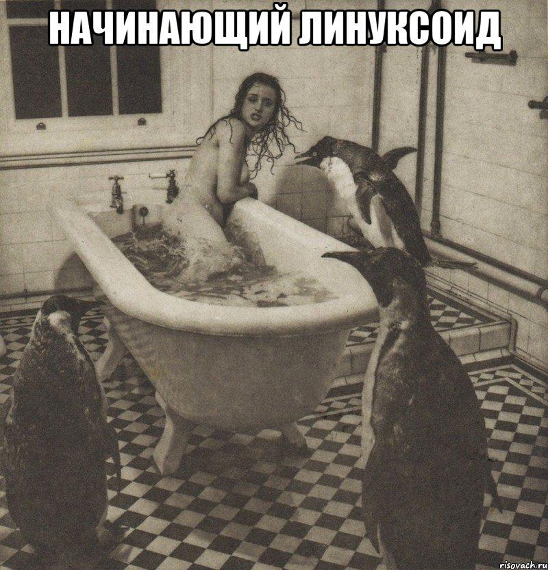 stolbnyak_29091585_big_.jpeg