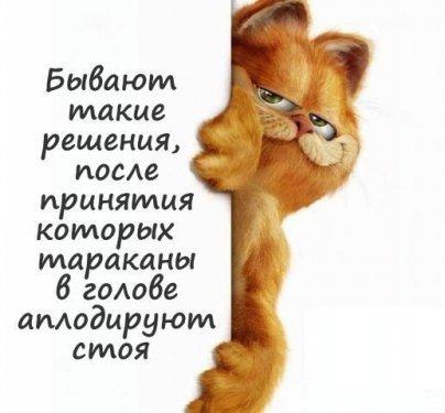Ayar_iQDeT4.jpg