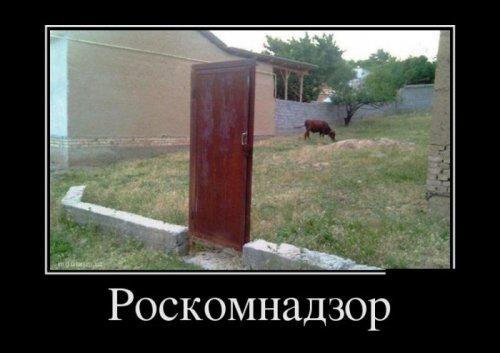 post-22172-0-88281600-1456407701_thumb.jpg