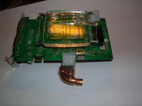 DSCN7142.jpg