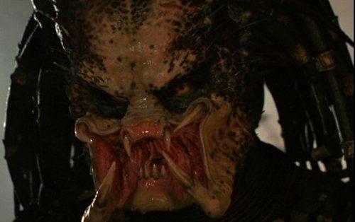 Predator_face2.jpg
