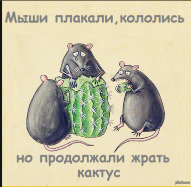 2017-11-05_16-39-53.png