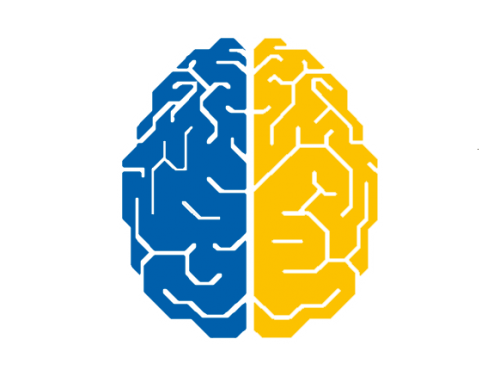 Brain_32.png