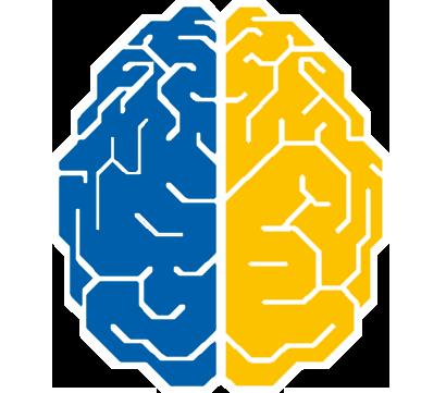 Brain_32New.png.f93eccd8aff0692503e992df13b42aa7.png