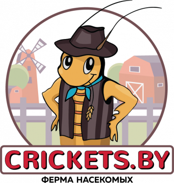 crickets_by_final_with_background_flattened.png