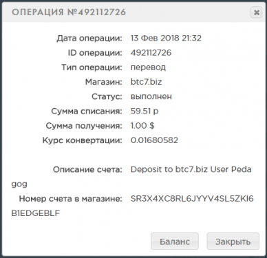 История _ Payeer® E-Wallet - Google Chrome 2018-02-13 21.33.46.png