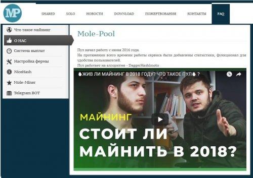 mole-pool2.jpg