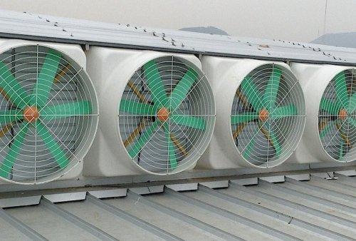 Roof-Exhaust-Fan-Roof-Ventilator-Roof-Ventilation-Fan-Industrial-Roof-Ventilation-Fan.jpg