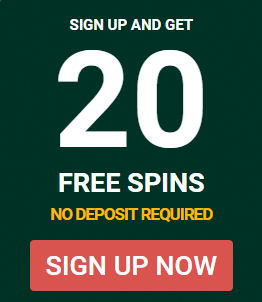 20 free spins.png