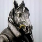 Конь Впальто
