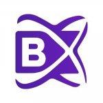 BlockchainX