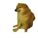 dogetoshi
