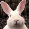 [ETH] Ethereum | Платформа децентрализованных приложений - последнее сообщение от jaj